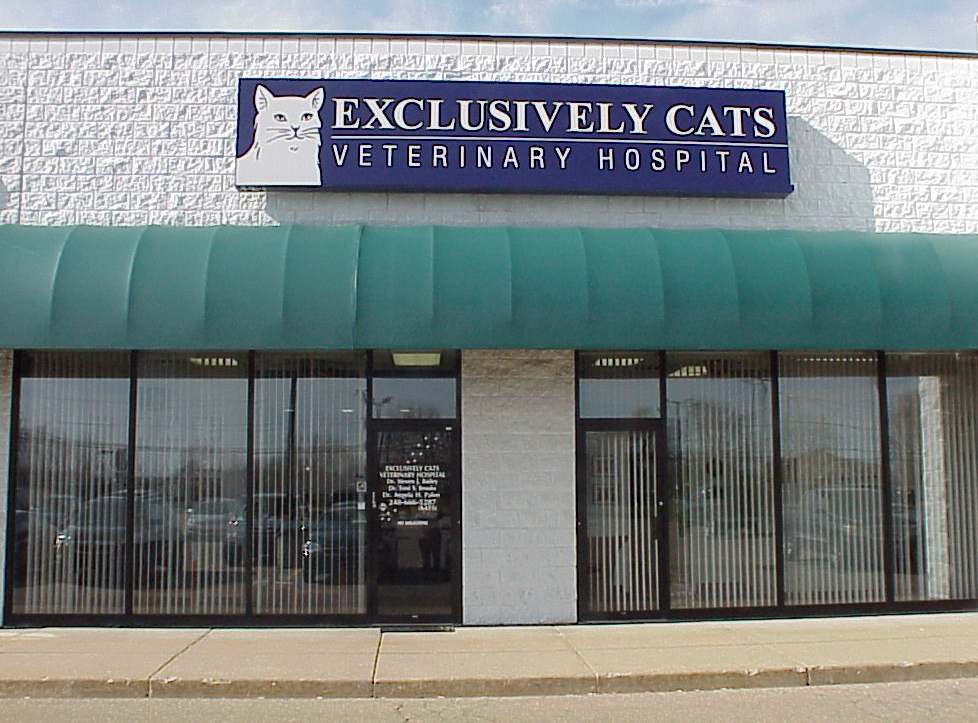Exclusively Cats Veterinary Hospital - Veterinarians serving the Detroit area, including Waterford, White Lake, Clarkston, West Bloomfield, Flint, Brighton MI, northern Ohio and Windsor, Canada. - Welcome to our site!